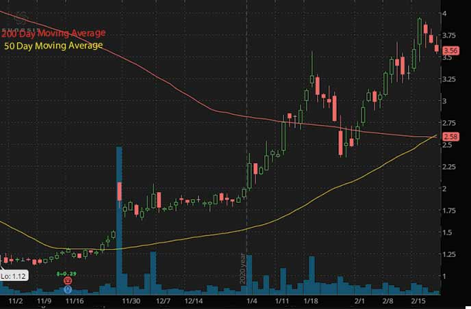 penny stocks to watch Sunesis Pharmaceuticals Inc. SNSS stock chart
