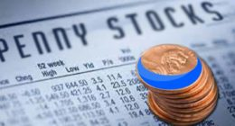 best penny stocks to buy on webull this week