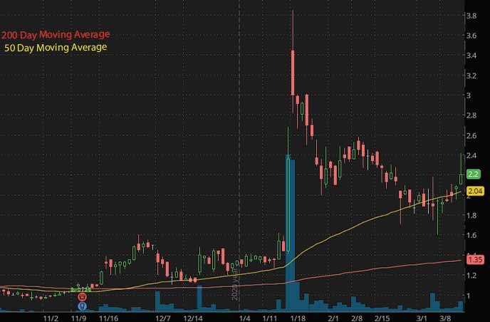 biotech penny stocks to watch Daré Bioscience DARE stock chart