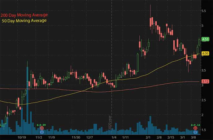 hot penny stocks to buy Selecta Biosciences SELB stock chart