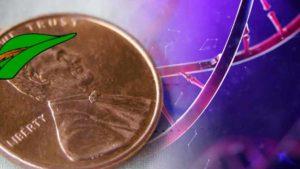 penny stocks on robinhood biotech stocks to buy