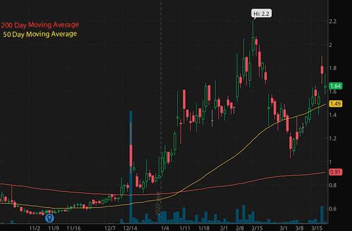 reddit penny stocks to watch Seneca Biopharma SNCA stock chart