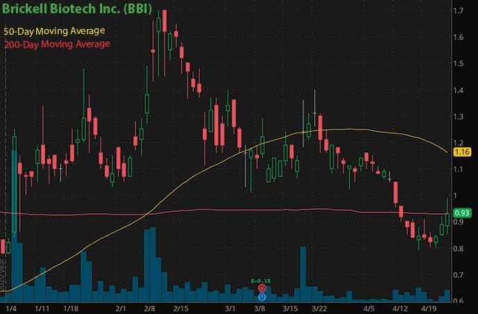 Reddit penny stocks to buy on Robinhood Brickell Biotech BBI stock chart