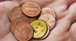 penny stocks dogecoin to buy right now