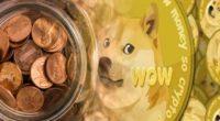 penny stocks to buy DOGE