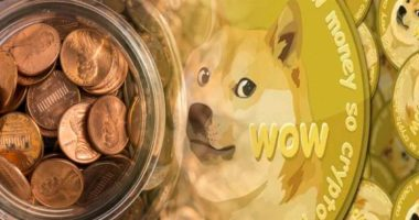 penny stocks to buy DOGE
