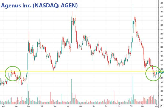 penny stocks to buy now Agenus Inc. AGEN stock chart