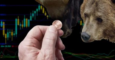 top penny stocks today bull bear coin chart