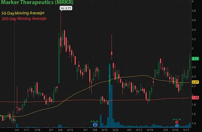 best penny stocks to buy right now Marker Therapeutics MRKR stock chart