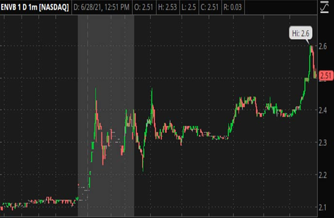 Penny_Stocks_to_Watch_Enveric_Biosciences_Inc_ENVB_Stock_Chart
