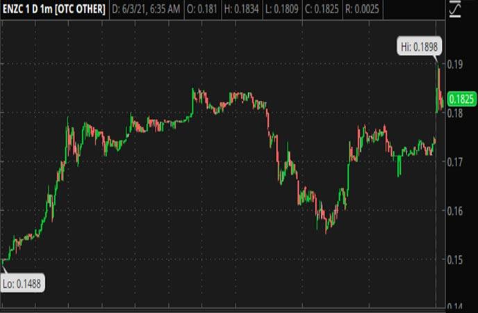 Penny_Stocks_to_Watch_Enzolytics_Inc._(ENZC_Stock_Chart)