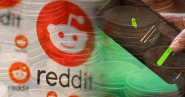 penny stocks on reddit and robinhood