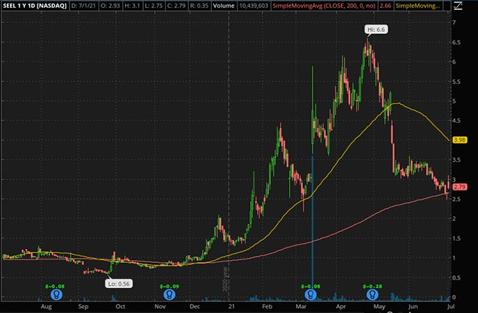 Penny_Stocks_to_Watch_Seelos