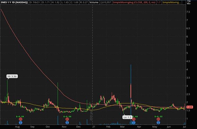 Penny_Stocks_to_Watch_SenesTech Inc. (SNES Stock Chart)