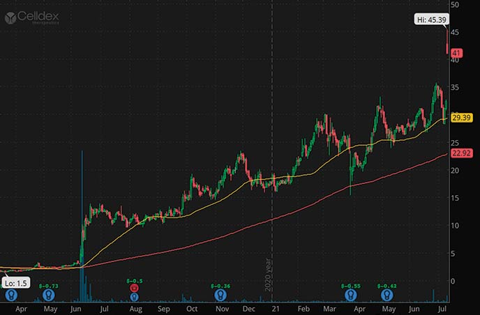 best penny stocks to watch Celldex Therapeutics CLDX stock chart