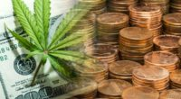 marijuana penny stocks buy now