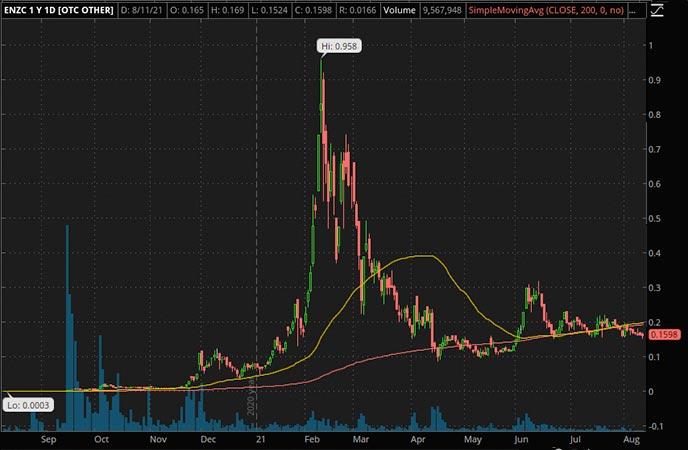 Penny_Stocks_to_Watch_Enzolytics