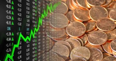 top penny stocks watch august