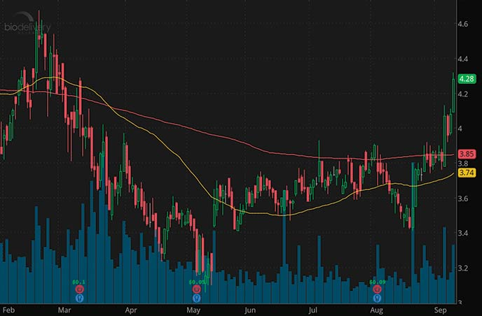 Reddit Penny Stocks to Watch BioDelivery Sciences BDSI Stock Chart