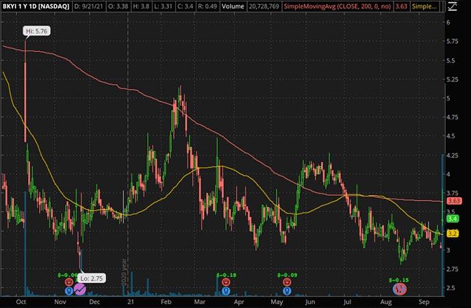 Penny_Stocks_to_Watch_BIO-key International Inc. (BKYI Stock Chart)