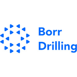 best penny stocks to watch under $1 Borr Drilling BORR stock