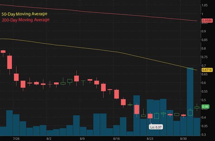penny stocks to buy on Robinhood under $1 Molecular Data Inc. MKD stock chart