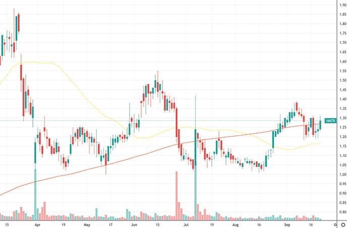 penny stocks to buy the dip 9 Meters Biopharma NMTR stock chart