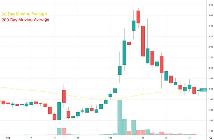 short squeeze penny stocks to buy under $5 Enveric Biosciences ENVB stock chart