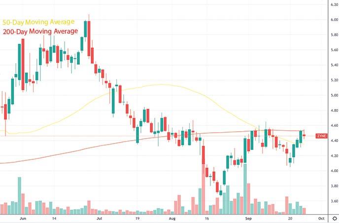 top penny stocks to watch this week Zynerba Pharmaceuticals ZYNE stock chart