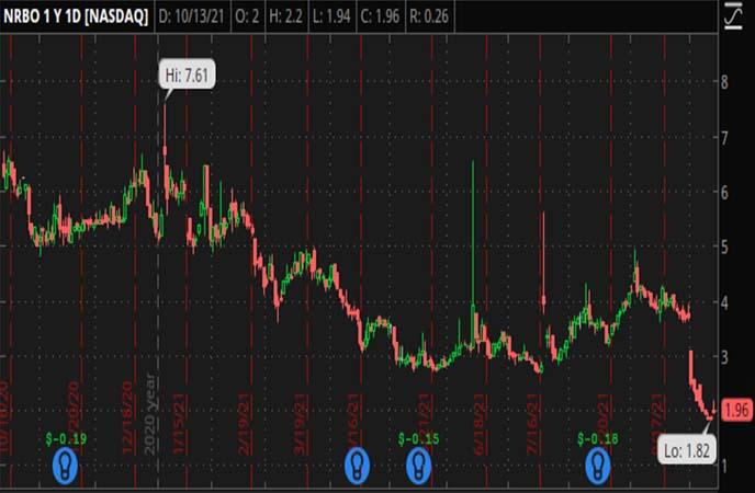 Penny_Stocks_to_Watch_NeuroBo_Pharmaceuticals_Inc_NRBO_Stock_Chart